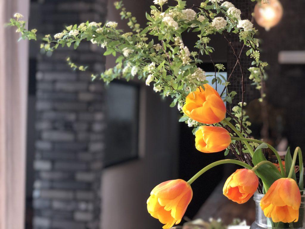 サロンの中に飾ったコデマリとオレンジ色のチューリップの花
